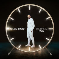 craig david - you don't miss your water