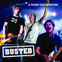 busted - what happened to your band