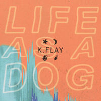 k.flay - good news