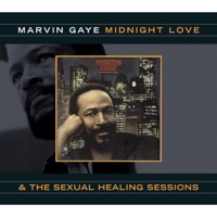 marvin gaye - life is now in session