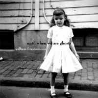 william fitzsimmons - everything has changed