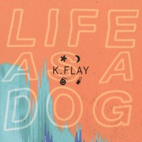 k.flay - not in california