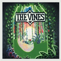 the vines - country yard