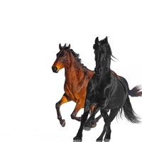lil nas x - old town road (the stickmen riverside rmx)
