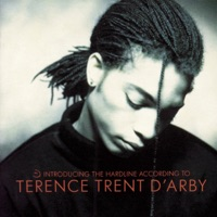 terence trent d'arby - if you go before me